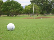 Golfing. Golf ball on green in arizona Stock Photo