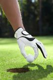 Golfing. Hand in glove puts the golf ball on the field Stock Images