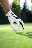 Golfing royalty-vrije stock afbeelding