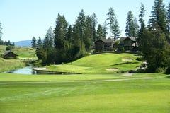 Golfing στοκ φωτογραφίες με δικαίωμα ελεύθερης χρήσης