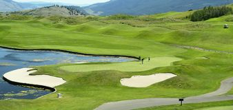 Golfing Stock Images