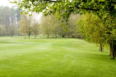 Golfing. Nice golfing day at spring time early in the morning stock photography