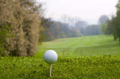 Golfing. Nice golfing day at spring time early in the morning stock photo
