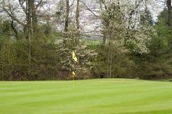 Golfing Fotografie Stock