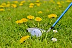Golfing Fotografie Stock Libere da Diritti
