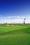Golfing course. Under palm trees royalty free stock photo