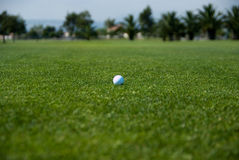 Golfing day Royalty Free Stock Image