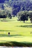 Golfing do homem Imagem de Stock Royalty Free