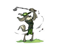 Golfing dog Stock Images