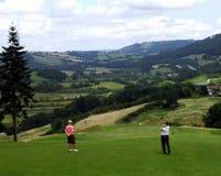 Golfing dos pares Imagem de Stock Royalty Free
