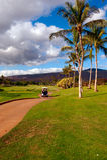 Golfing en Oahu, Hawaii foto de archivo