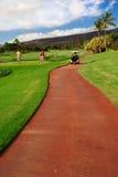 Golfing en Oahu, Hawaii imagen de archivo