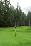 Golfing Golf Course. A beautiful green golf course amongst the trees Royalty Free Stock Images