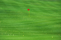 Golfing and golf course. Golf balls on the green grass. Golf field. Many balls on the golf course Royalty Free Stock Image