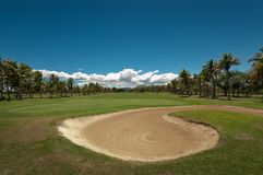 Golfing in Paradise. WS: Golf green and sand  trap ringed by coconut palms by the sea under a blue sky. Denarau Golf & Racquet Club, Fiji Royalty Free Stock Photo