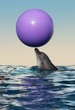 golfinho Imagem de Stock Royalty Free