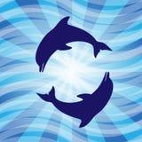 Golfinho-Dance sob a água ilustração stock