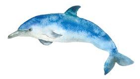Golfinho do azul da aquarela Fotografia de Stock Royalty Free