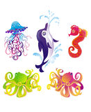 Golfinho dos desenhos animados, starfish, polvo, seafad. Vetor ilustração royalty free