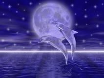 Golfinhos Imagens de Stock Royalty Free