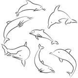 Golfinhos ilustração royalty free