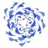 Golfinhos azuis que nadam circular Fotografia de Stock Royalty Free