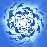 Golfinhos azuis que nadam circular Fotos de Stock