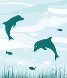 Golfinhos no oceano Ilustração do Vetor