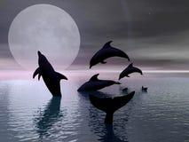 Golfinhos que jogam no luar ilustração stock