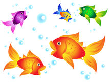 Golfish and friends. Fun and colorful sea creatures: goldfish with other colorful options with blue bubbles Stock Photo