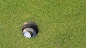 Golfista de la c?mara lenta que pone la pelota de golf en el agujero metrajes