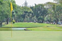 Golfista en la acción del tiro de la camiseta Imágenes de archivo libres de regalías