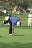 Golfista profesional de Tiger Woods Foto de archivo libre de regalías