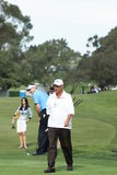 Golfista profesional mediato de Rocco Imagen de archivo libre de regalías