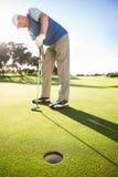 Golfista que se coloca en el agujero de observación del putting green Fotos de archivo libres de regalías