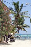 Golfkar door het strand wordt geparkeerd dat stock fotografie