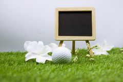 Golfklasse met golfbal en bord op witte achtergrond royalty-vrije stock afbeelding