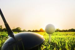 Golfklubb och golfboll på grönt gräs som är klart att spela royaltyfri bild