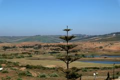 Golflandschaft mit Bäumen und Seen lizenzfreies stockfoto