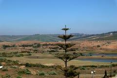 Golflandschap met bomen en meren royalty-vrije stock foto