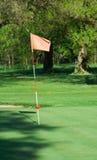 Golfmarkierungsfahne lizenzfreies stockfoto