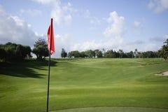 Golfmarkierungsfahne auf Grün Lizenzfreies Stockfoto