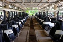 Golfmobile, die im Parkplatz parken Lizenzfreie Stockfotografie
