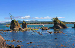 Golfo alla costa del Pacifico Fotografie Stock Libere da Diritti