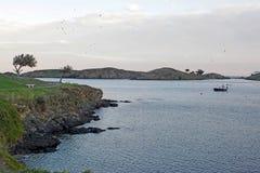 Golfo in crepuscolo e pescherecci Fotografie Stock