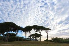 Golfo de Baratti, Toscânia, Italia Imagens de Stock