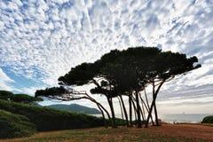 Golfo de Baratti, Toscânia, Italia Fotos de Stock