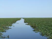 Golfo de Musura Fotos de Stock