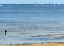 Golfo de Riga na estância turística de Jurmala, Letónia Imagem de Stock Royalty Free