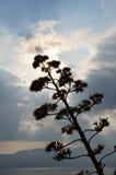 Golfo di Argolic Fotografia Stock Libera da Diritti